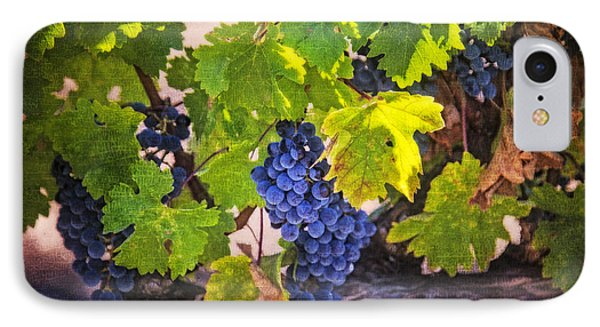 Grapevine With Texture IPhone Case by Garry Gay
