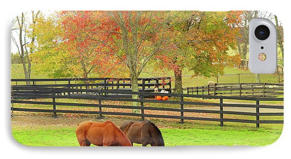 Grazing Time IPhone Case