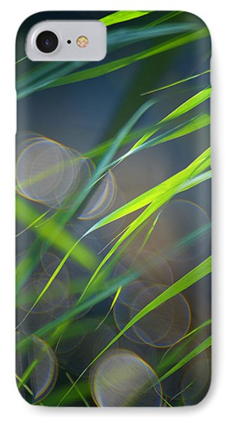 Grass And Evening Light IPhone Case by Silke Magino