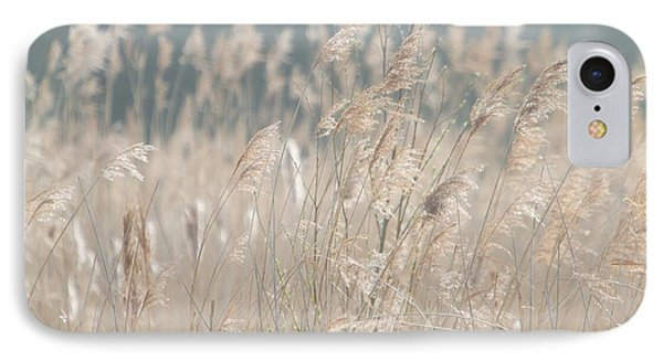 Grass  IPhone Case by Gary Bridger