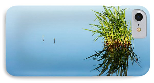 Grass In Blue IPhone Case