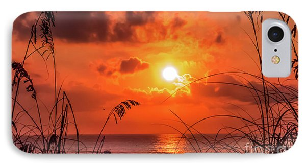 Grass Silhouettes At Sunrise IPhone Case