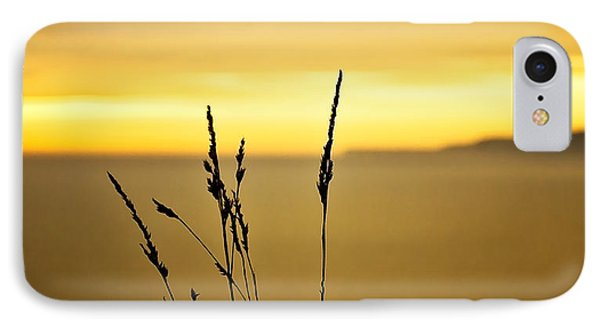 Grass Phone Case by Svetlana Sewell