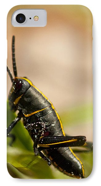 Grasshopper 2 Phone Case by Anthony Towers