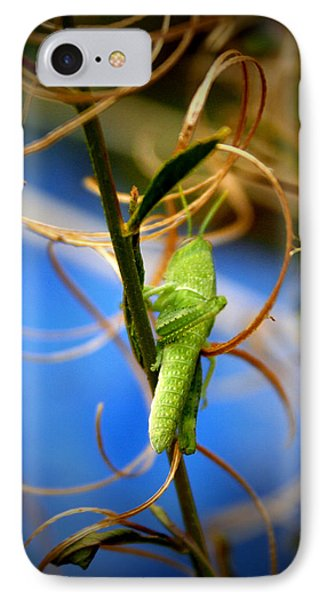 Grassy Hopper IPhone 7 Case by Chris Brannen