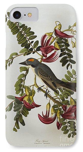 Gray Tyrant Phone Case by John James Audubon