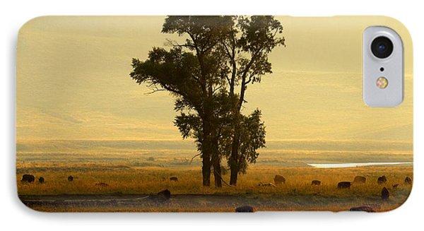Grazing Around The Tree IPhone Case by Adam Jewell