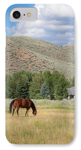 Grazing Horse IPhone Case