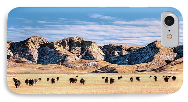 Grazing In The Badlands IPhone Case by Todd Klassy