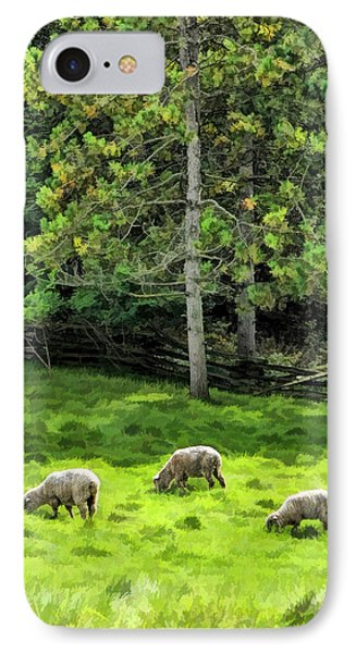 Grazing Sheep At Old World Wisconsin IPhone Case by Christopher Arndt