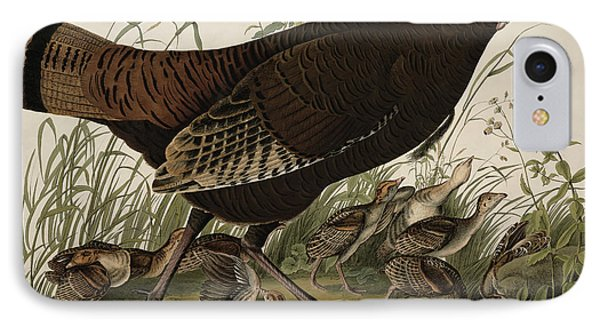 Great American Hen And Young Phone Case by John James Audubon