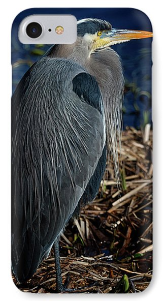 IPhone Case featuring the photograph Great Blue Heron 2 by Randy Hall