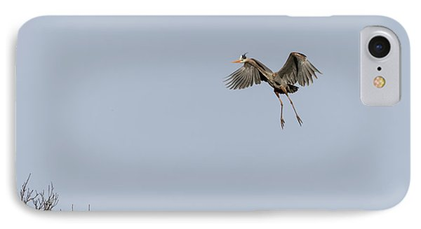 IPhone Case featuring the photograph Great Blue Heron 2015-14 by Thomas Young