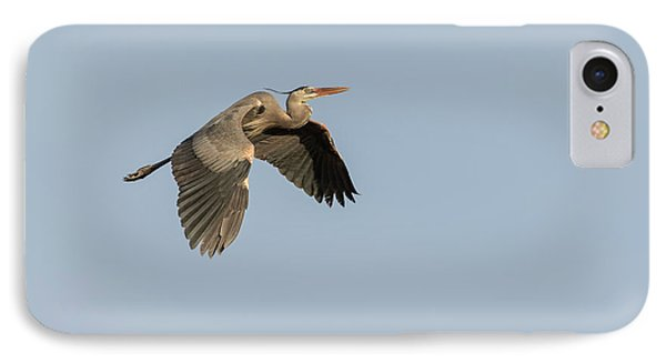 Great Blue Heron 2015-15 IPhone Case by Thomas Young