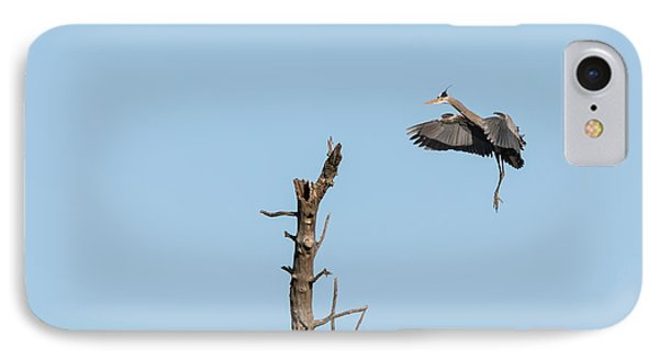 Great Blue Heron 2017-3 IPhone Case by Thomas Young