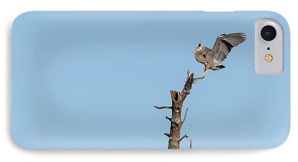 Great Blue Heron 2017-4 IPhone Case by Thomas Young