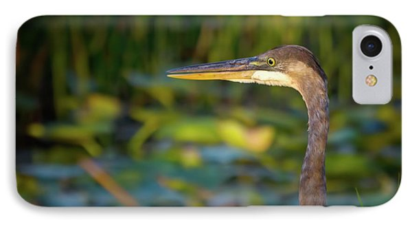 Great Blue Heron At Sunset IPhone Case by Mark Andrew Thomas