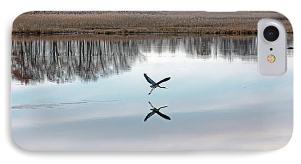 Great Blue Heron At Take-off IPhone Case