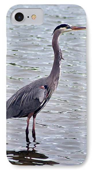 IPhone Case featuring the photograph Great Blue Heron by Bill Barber