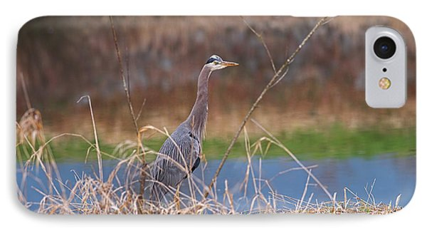 IPhone Case featuring the photograph Great Blue Heron By The River by Sharon Talson