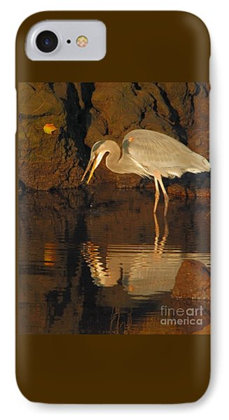 Great Blue Heron IPhone Case by Debbie Stahre