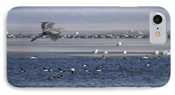 Great Blue Heron In Flight 2014-2 IPhone Case by Thomas Young