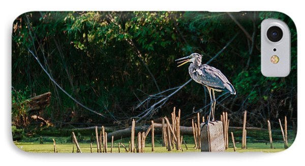 Great Blue Heron Mouth IPhone Case by Edward Peterson