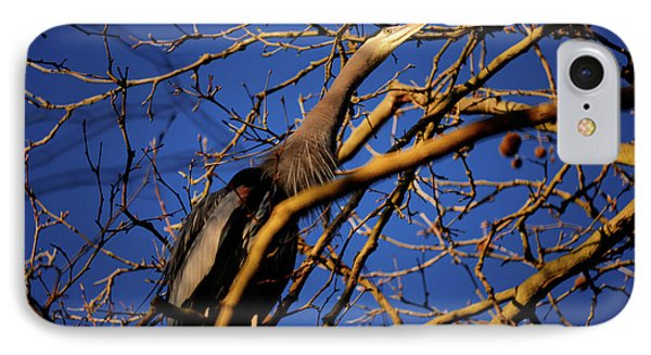 IPhone Case featuring the photograph Great Blue Heron Nesting 2017 - 3 by Terry Elniski