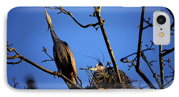 IPhone Case featuring the photograph Great Blue Heron Nesting 2017 - 5 by Terry Elniski