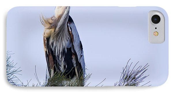 Great Blue Heron On A Windy Day Phone Case by Roger Wedegis