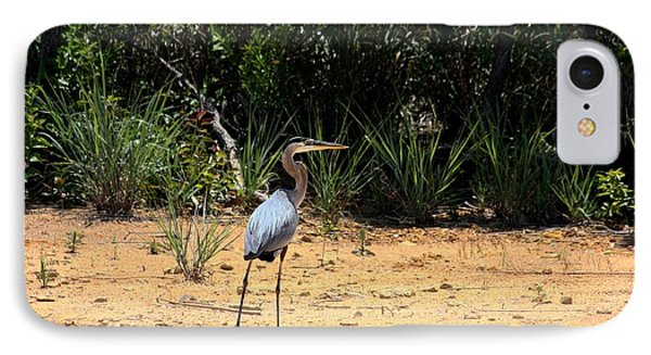 IPhone Case featuring the photograph Great Blue Heron On Beach by Sheila Brown