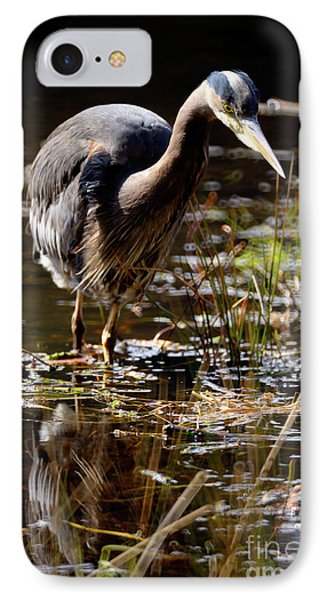 IPhone Case featuring the photograph Great Blue Heron On The Hunt 2 by Terry Elniski