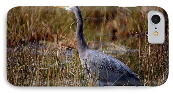 IPhone Case featuring the photograph Great Blue Heron On The Hunt 3 by Terry Elniski