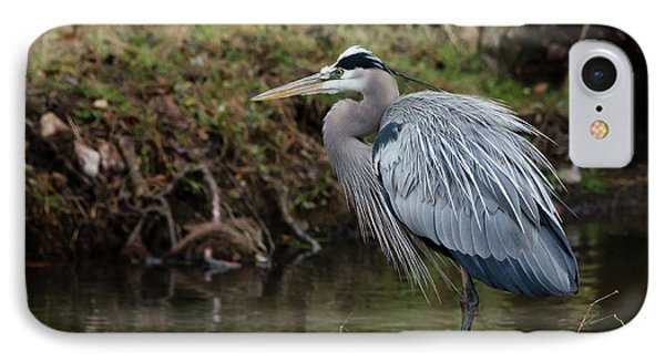 Great Blue Heron On The Watch IPhone Case by George Randy Bass