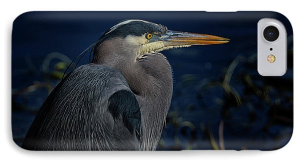 IPhone Case featuring the photograph Great Blue Heron by Randy Hall