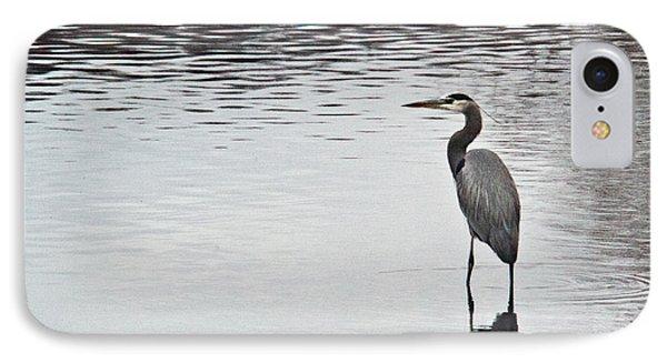Great Blue Heron Wading 3 Phone Case by Douglas Barnett
