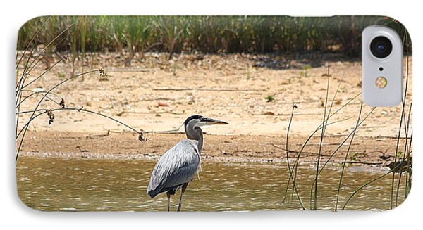 IPhone Case featuring the photograph Great Blue Heron Wading by Sheila Brown
