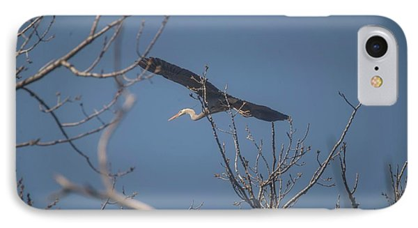 IPhone Case featuring the photograph Great Blue In Flight by David Bearden