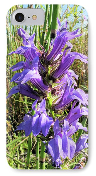 IPhone Case featuring the photograph Great Blue Lobelia by Scott Kingery
