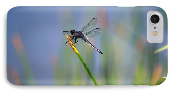 IPhone Case featuring the photograph Great Blue Skimmer by Brenda Bostic