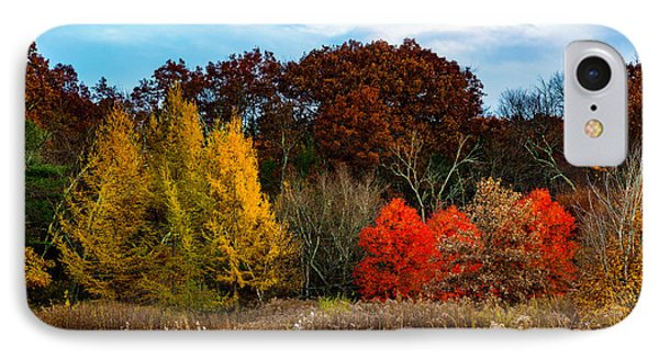 Great Brook Farm Autumn IPhone Case