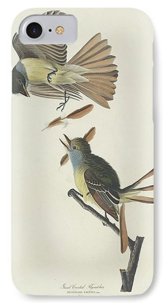 Flycatcher iPhone 7 Case - Great Crested Flycatcher by Dreyer Wildlife Print Collections