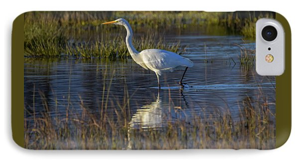 Great Egret, Ardea Alba, In A Pond IPhone Case
