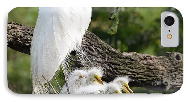 Great Egret Family  IPhone Case by Richard Bryce and Family