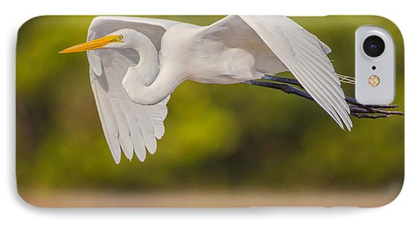 Great Egret Folded Wings IPhone Case