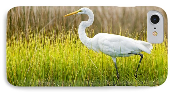 IPhone Case featuring the photograph Great Egret In Cedar Point Marsh by Bob Decker