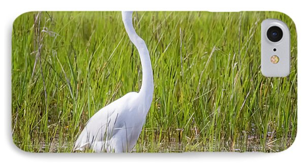 IPhone Case featuring the photograph Great Egret In The Spring  by Ricky L Jones