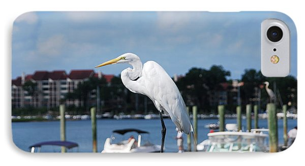IPhone Case featuring the photograph Great Egret by Margaret Palmer