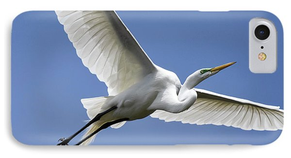 Great Egret Soaring IPhone Case by Gary Wightman