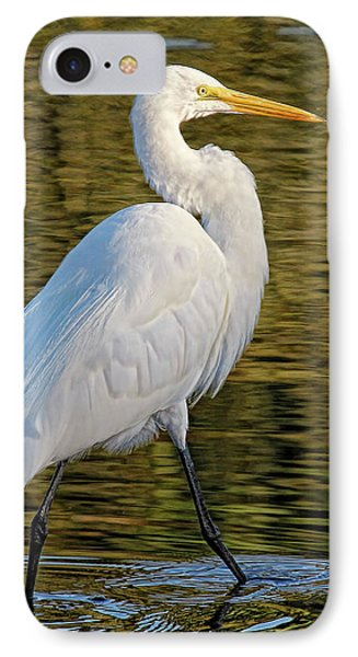Great Egret Stroll IPhone Case by HH Photography of Florida